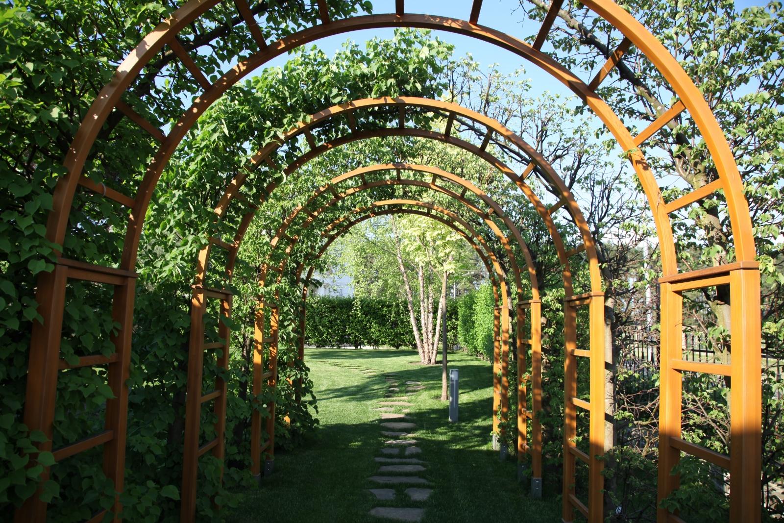 Акции в тульском питомнике растений Садовый Лабиринт