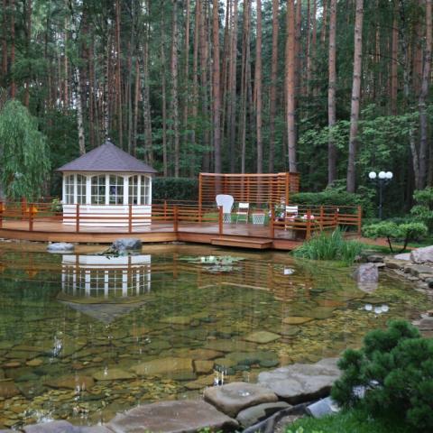 Искусственный пленочный пруд с прозрачной водой