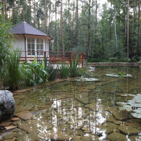 Готовая зона для отдыха и прогулок с живописным прудом.