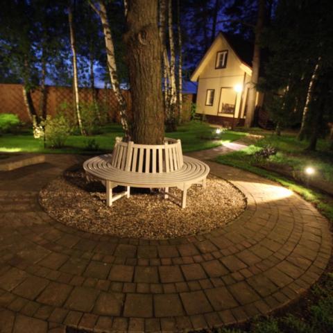 Площадка с деревом и скамейкой