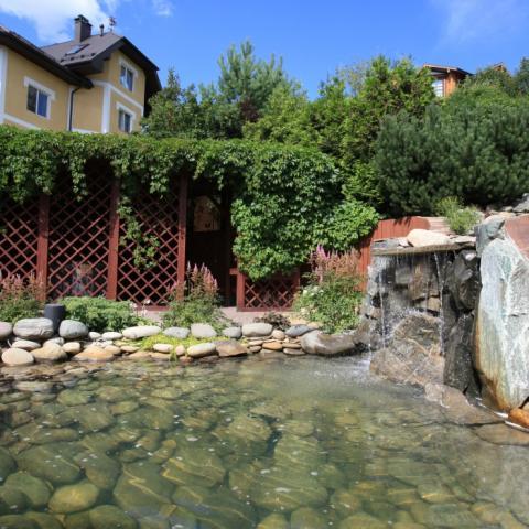 Водоем и пергольная конструкция увитая девичьим виноградом