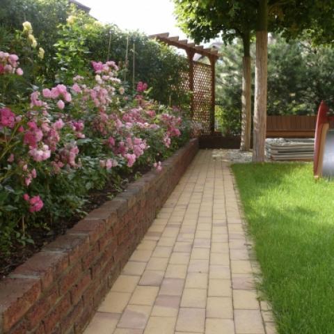 Дорожка из клинкерного кирпича и бордюрные розы