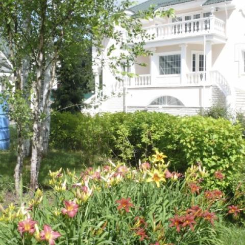 Многолетний цветник из лилейников. Озеленение