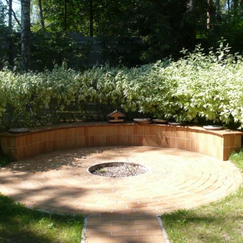 Садовое кострище со скамейкой. Дерен белопестрый