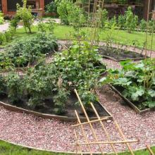 Огород на садовом участке в монастырском стиле