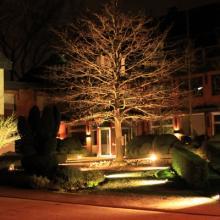 Садовое освещение в весеннем саду