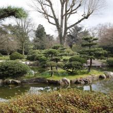 Норд-парк с Японским садом