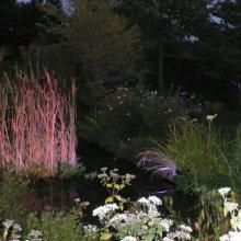 Ночное садовое освещение