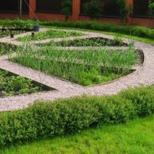 Дизайнерский огород