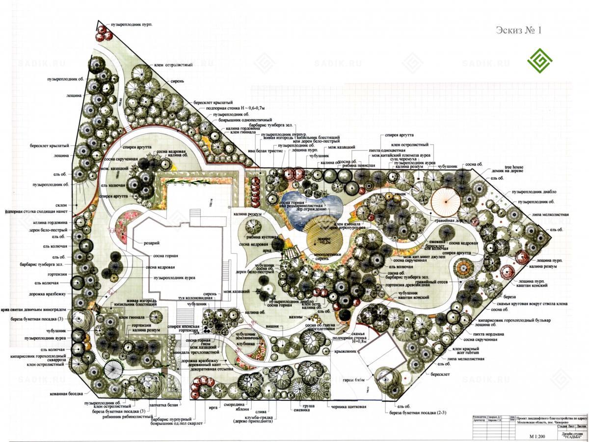 Ландшафтное проектирование эскиз 1
