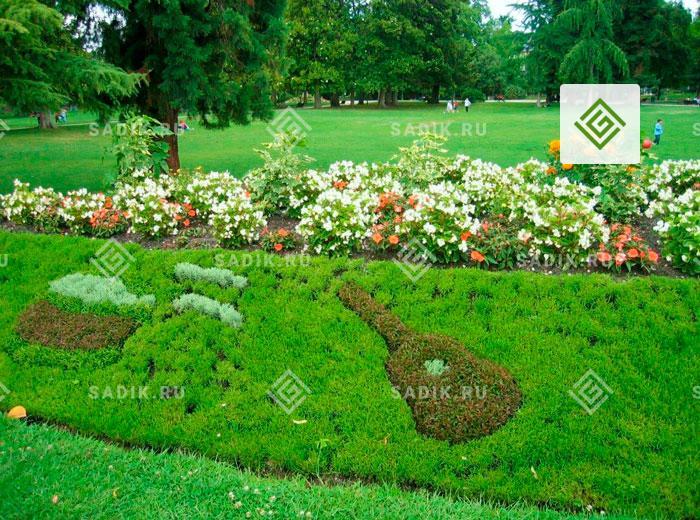 Цветник в саду в форме музыкальных инструментов
