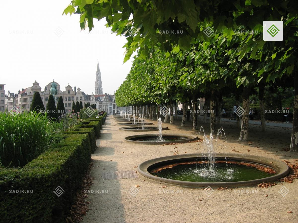 Фонтаны в знаменитом парке