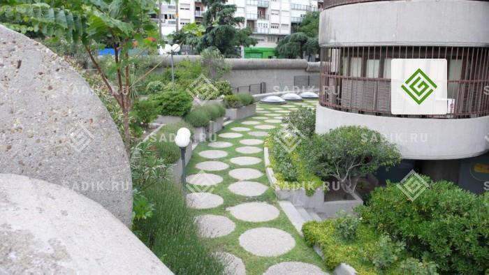 Газон в компактном городском саду