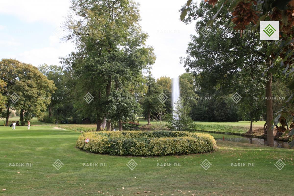 Фонтан и водоем на поле для гольфа