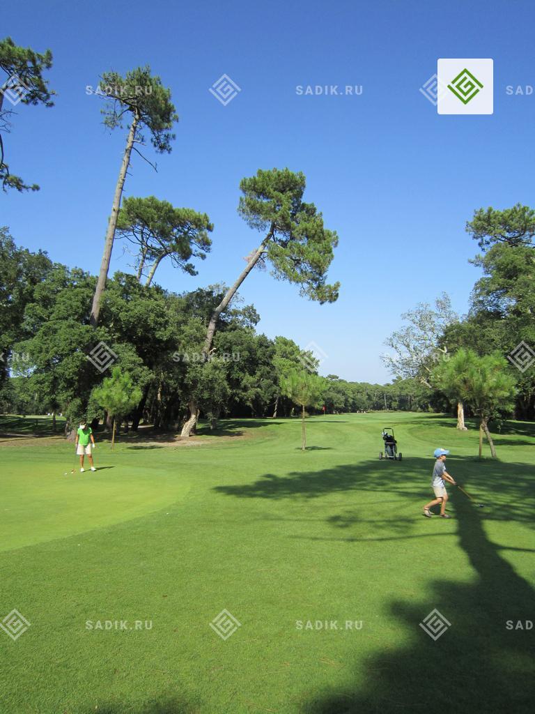 Поле для игры в гольф в Англии