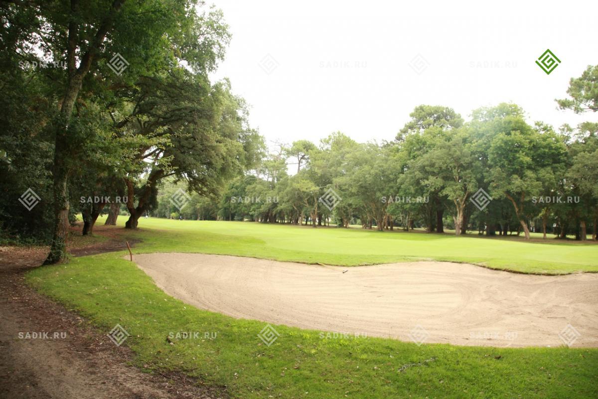 Песчаный участок гольф поля