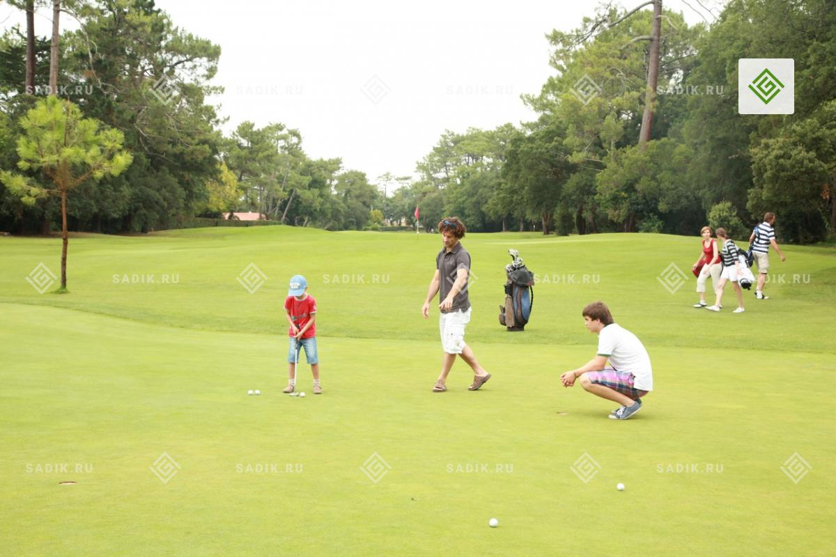 Лунки на поле для гольфа
