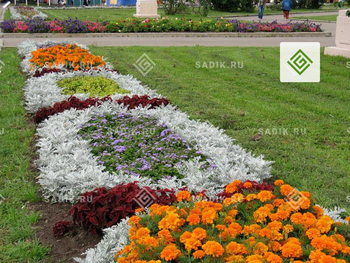 Клумба известном московском городском парке