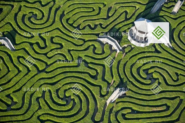 Лабиринт поместья Лонглит (Longleat Maze) в Великобритании имеет самую большую суммарную длину ходов – 2,7 км