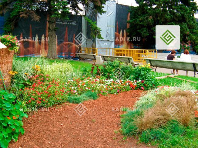 Мульча из древесных отходов используется как покрытие садовой дорожки
