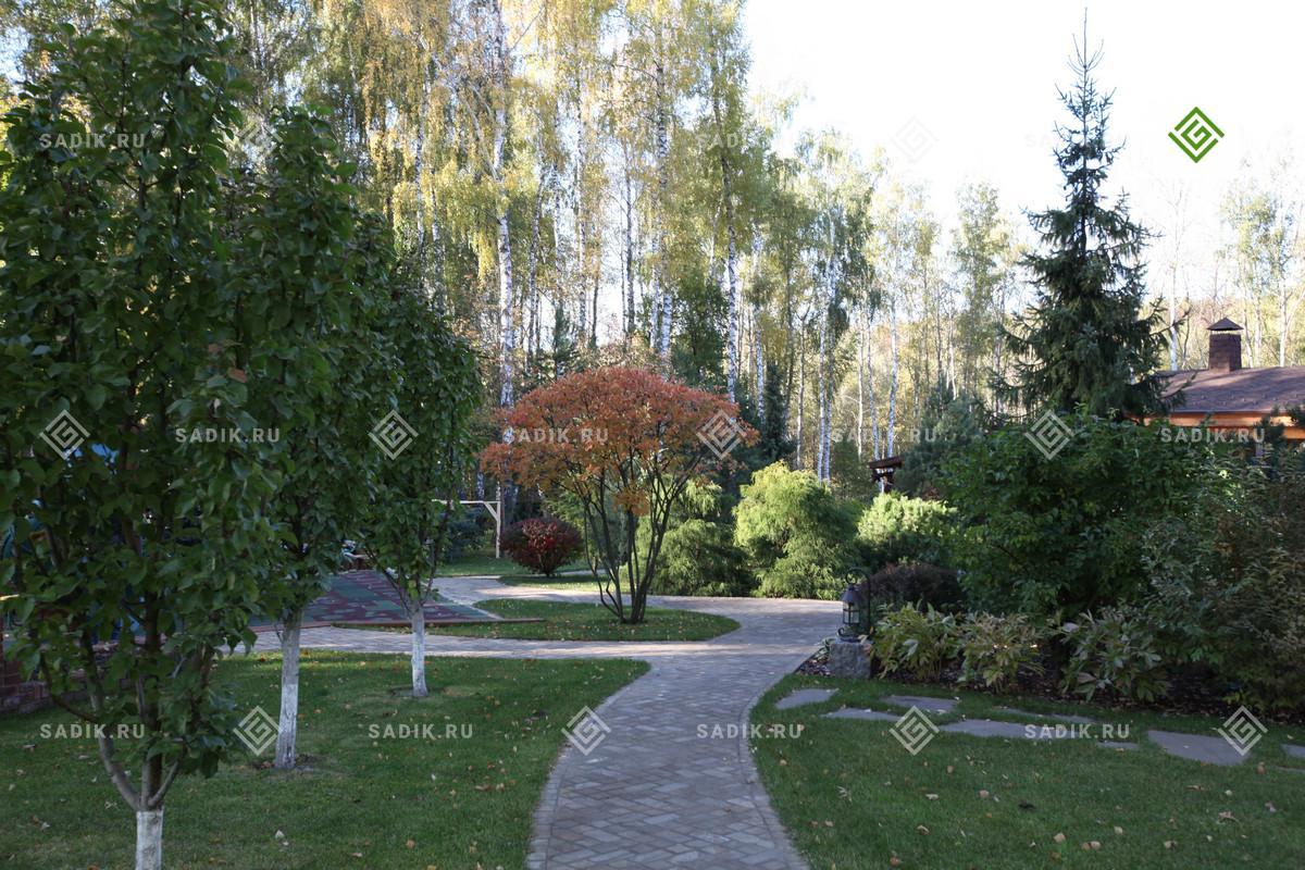 Озеенение участка - газоны, цветники, посадка крупномеров
