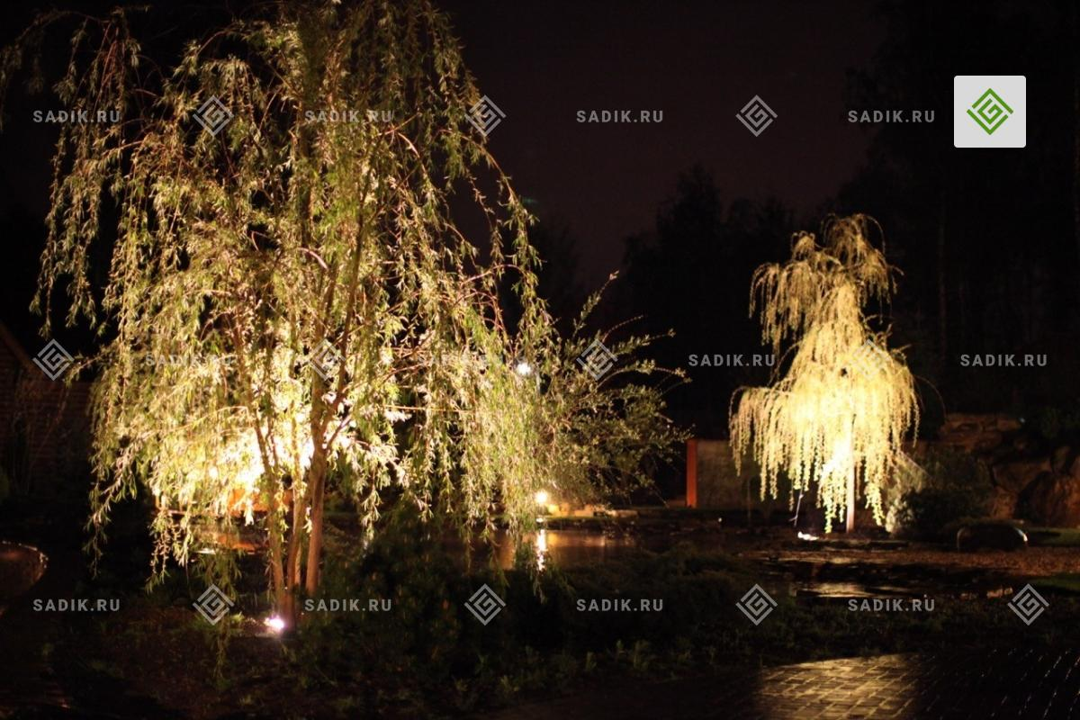 Праздничное ночное освещение сада