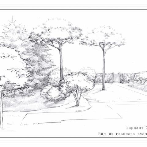 Поэтапные рисунки в ландшафтном дизайне